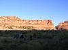 ruby-horsethief-2010-104_1030x770