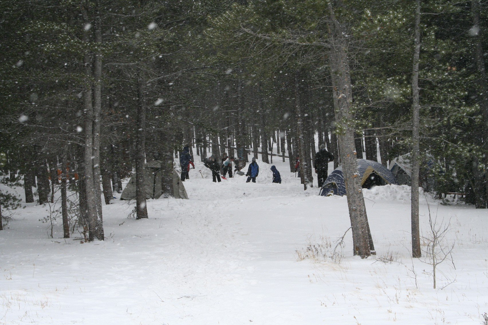 tahosa-february-2011-16