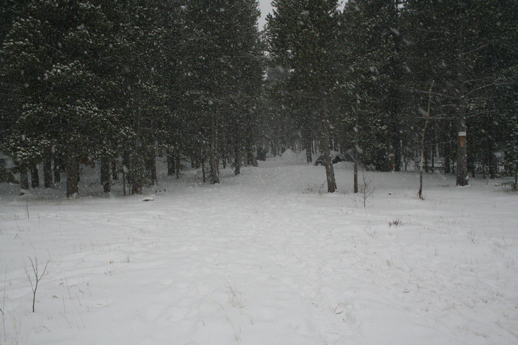 tahosa-february-2011-85